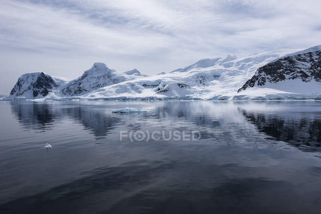 Cold landscape reflected in water — Stock Photo
