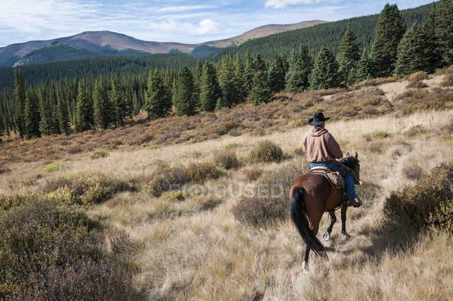 Mann auf Pferd beim Wanderreiten — Stockfoto