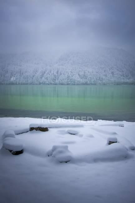 Chute de neige fraîche en montagne — Photo de stock