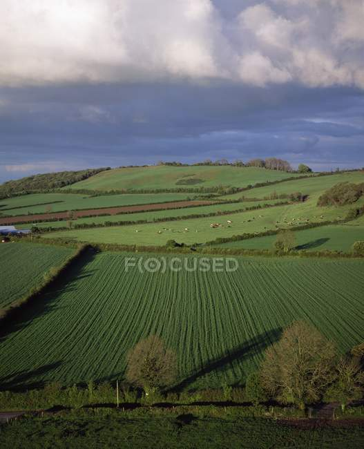 Vista panorâmica das terras agrícolas — Fotografia de Stock