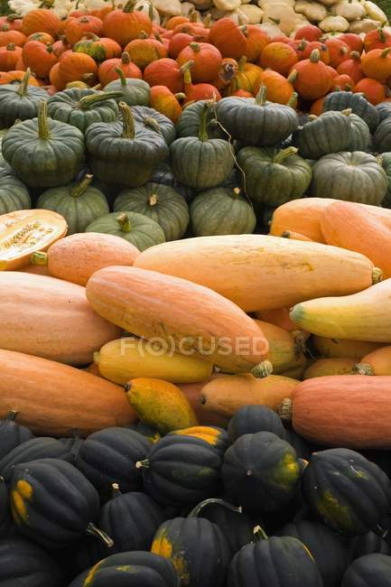 Produce Display with vegetables — Stock Photo