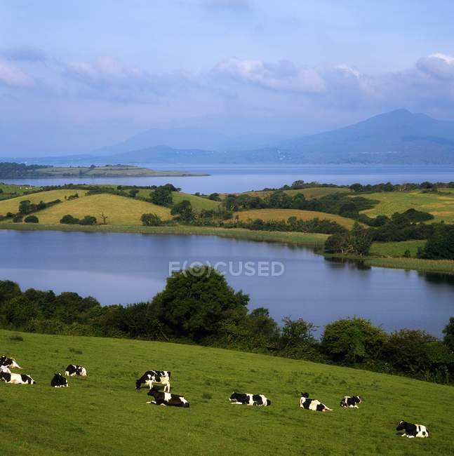 Bantry Bay, County Cork — Stock Photo