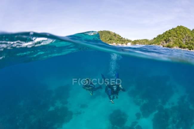 Живописный вид подводного плавания под водой — стоковое фото