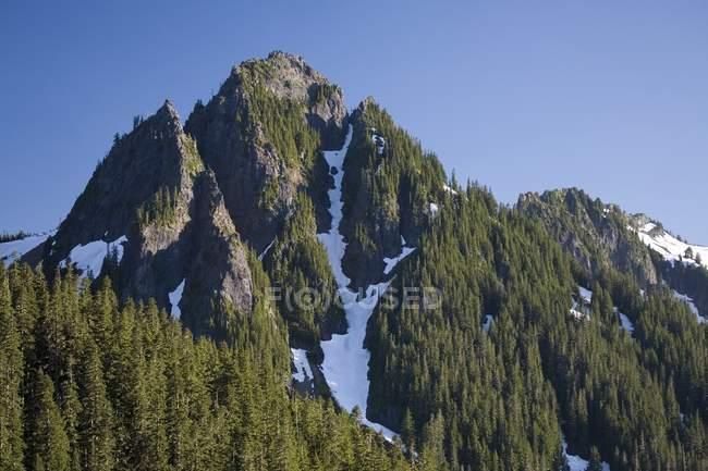 Tatoosh гори, Mount Rainier Національний парк — стокове фото