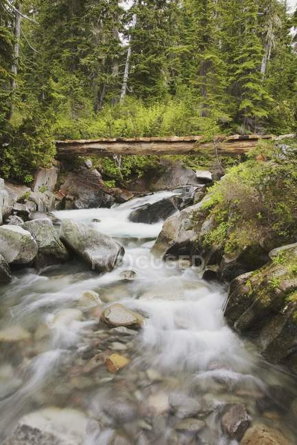 Flowing River in mountains — Stock Photo