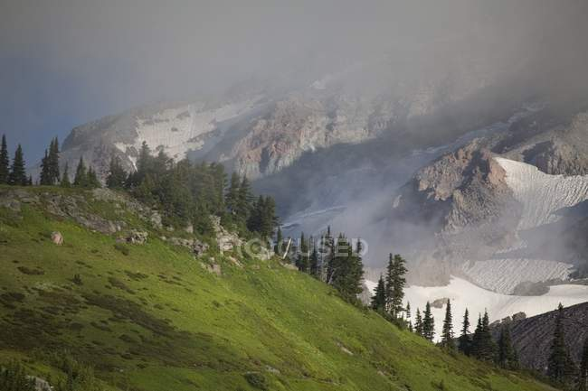 Low Lying Cloud In Mount Rainier National Park — Stock Photo