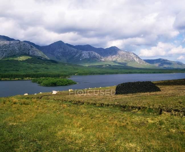 Живописная страна пейзаж — стоковое фото