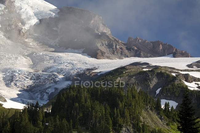 Mount Rainier national park — Fotografia de Stock