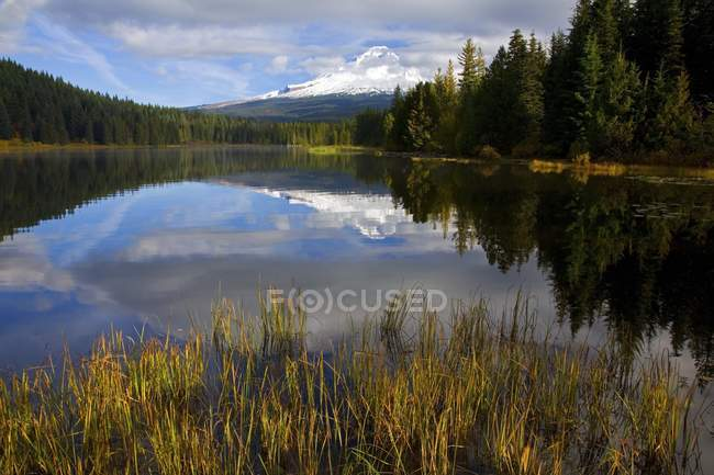 TRILIUM Lake, Oregon Cascades — Foto stock