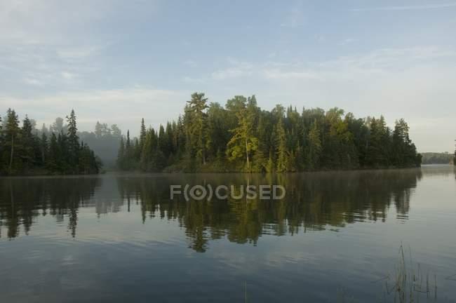 Alberi sulla riva contro l'acqua — Foto stock