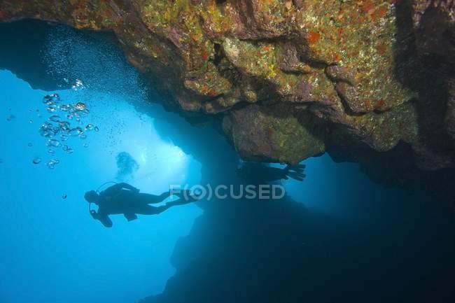 Vista panorámica de buceadores nadando bajo el agua - foto de stock