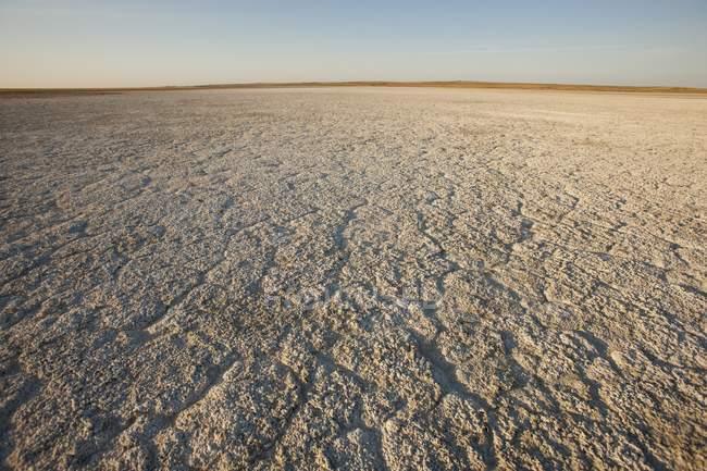 Terra seca atingindo o horizonte — Fotografia de Stock
