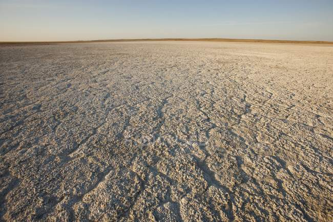 Dry Ground Reaching Into Horizon — Stock Photo