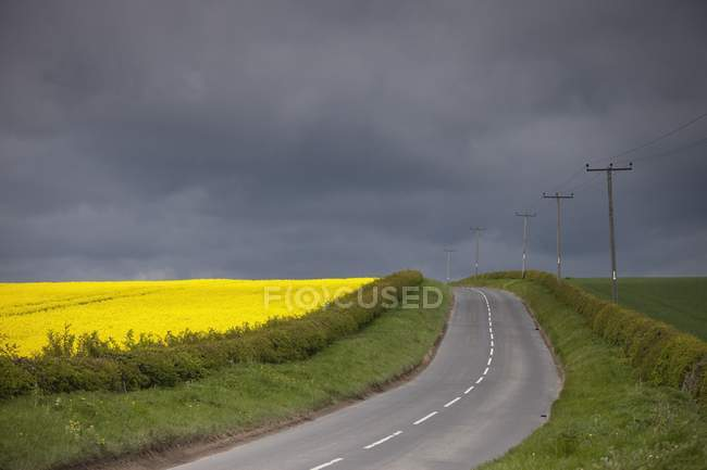 Rural Road; North Yorkshire, England — Stock Photo