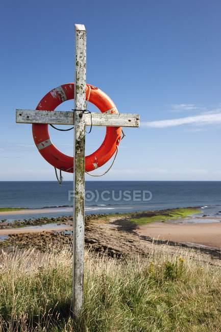 Anel de vida pendurado pela praia — Fotografia de Stock