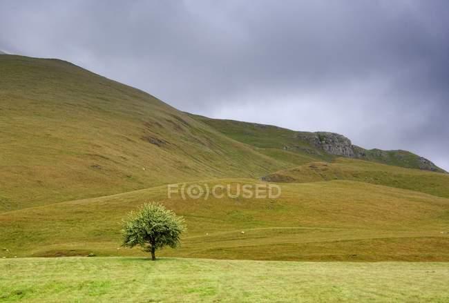 Dark Skies, England — Stock Photo