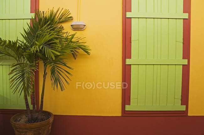 Porte verdi e pareti gialle — Foto stock