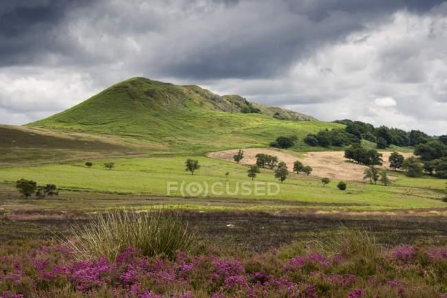 Paesaggio paesaggistico con collina — Foto stock