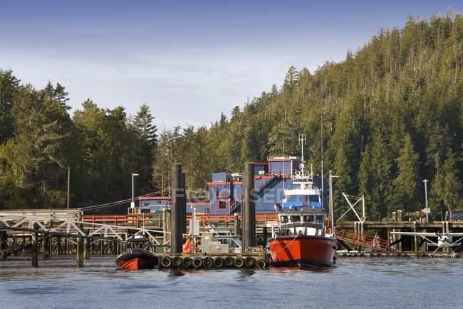 Barcos no porto, Tofino — Fotografia de Stock