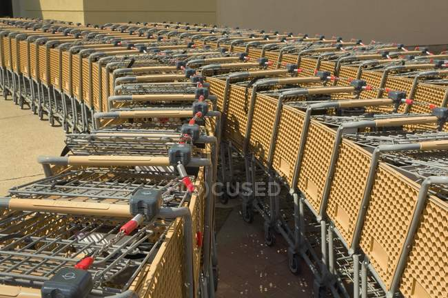 Lot of shopping carts placed in rows at parking — Stock Photo