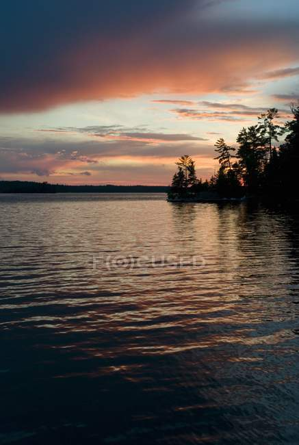 Lake Of Woods and trees — Stock Photo