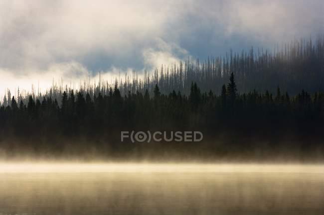 Туманний гірського озера на сході сонця — стокове фото