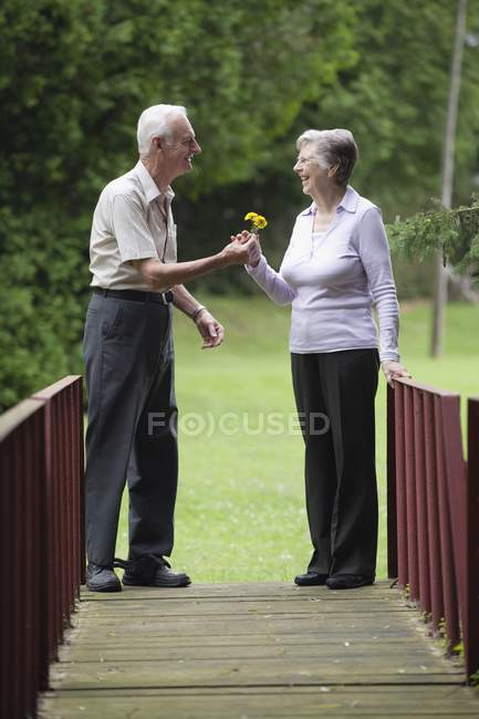 Happy senior caucasian couple sharing flowers on bridge — Stock Photo