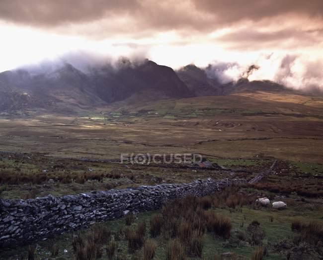 Conor Pass; Comté de Kerry, Irlande — Photo de stock
