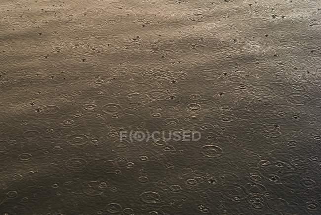 Дождя на воде — стоковое фото