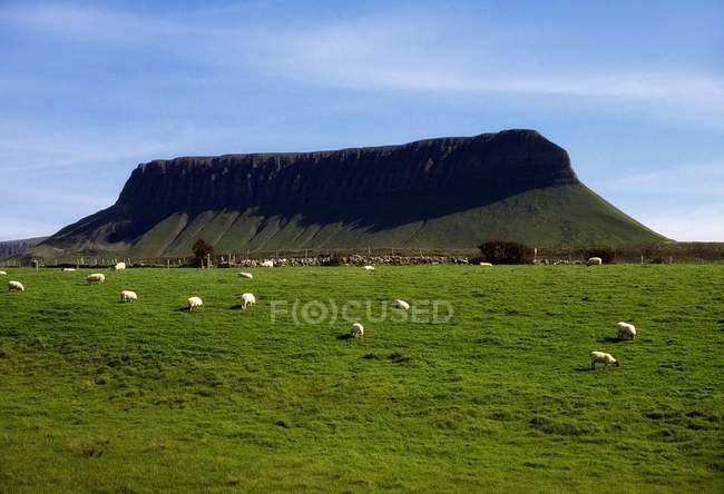 Ben Bulben, Sligo do condado — Fotografia de Stock