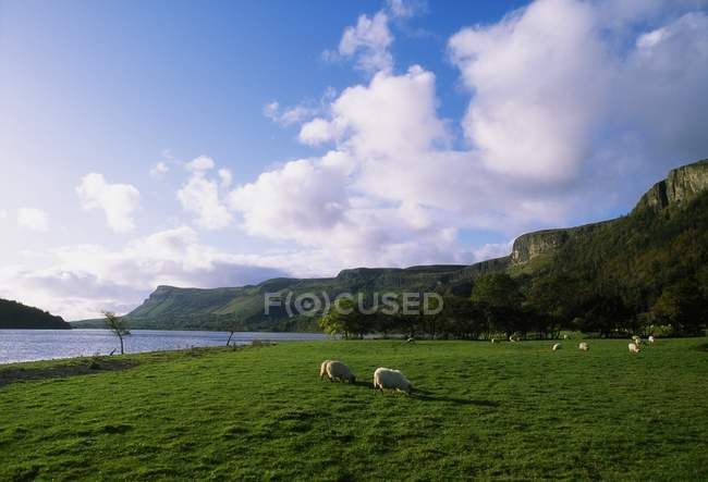 Glencar Lake, County Sligo, Irlanda — Fotografia de Stock