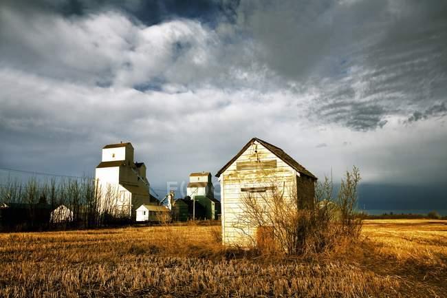Estructuras de la granja en el campo - foto de stock