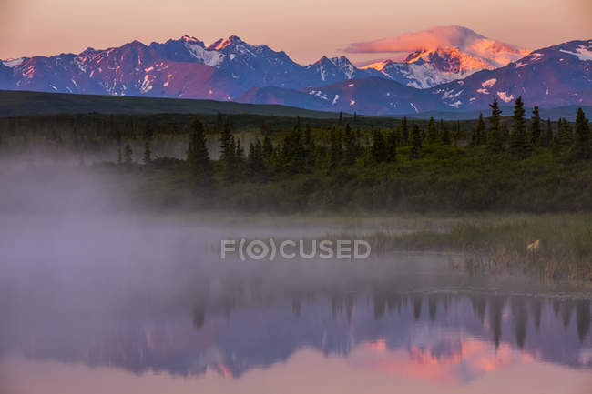 Trees and mountains reflecting in calm lake water with mist — Stock Photo