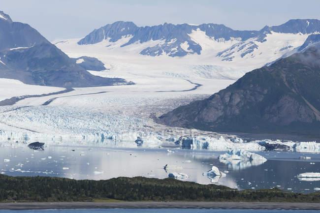 Oso glaciar y Laguna, Península de Kenai; Alaska, Estados Unidos de América - foto de stock