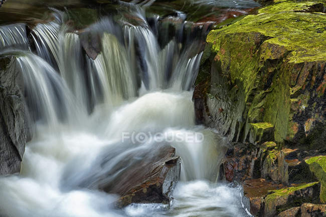 Water going down over stones and rocks with moss in forest during daytime — Stock Photo