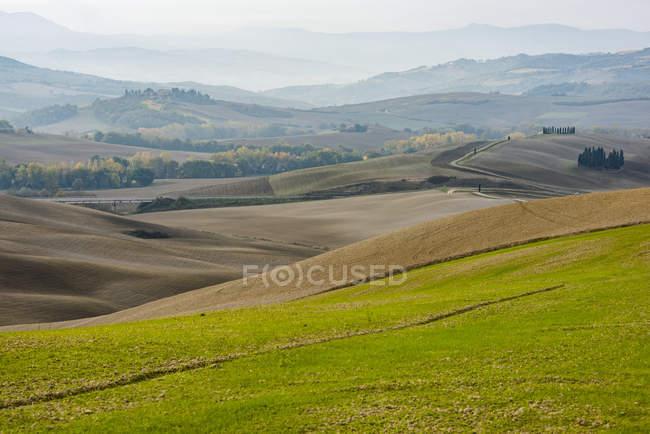 Большая зеленая травяная долина на фоне холмов — стоковое фото
