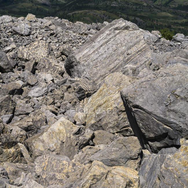 Piton rocheux de montagne avec la vallée et les arbres sur pied — Photo de stock