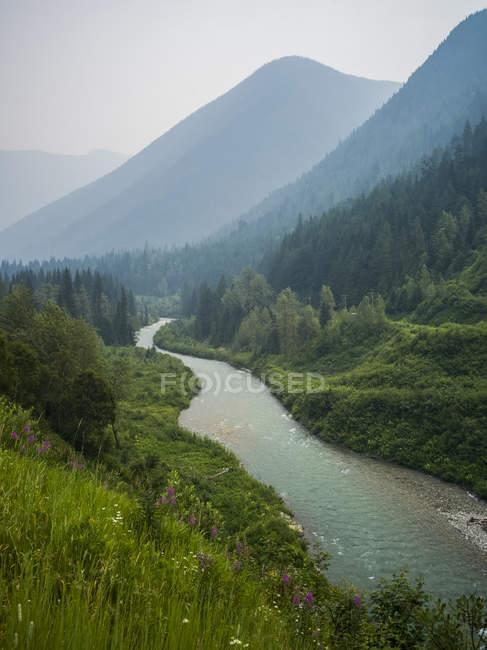 Vista del fiume acqua circondato da pendii di montagne e alberi sulle sponde — Foto stock