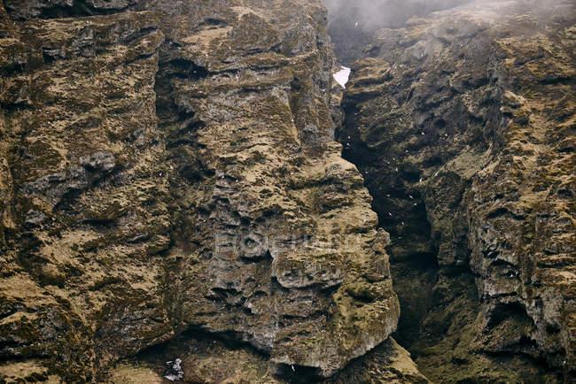 Скалистых утесов с тупики, Snaefellsnes полуострова; Исландия — стоковое фото