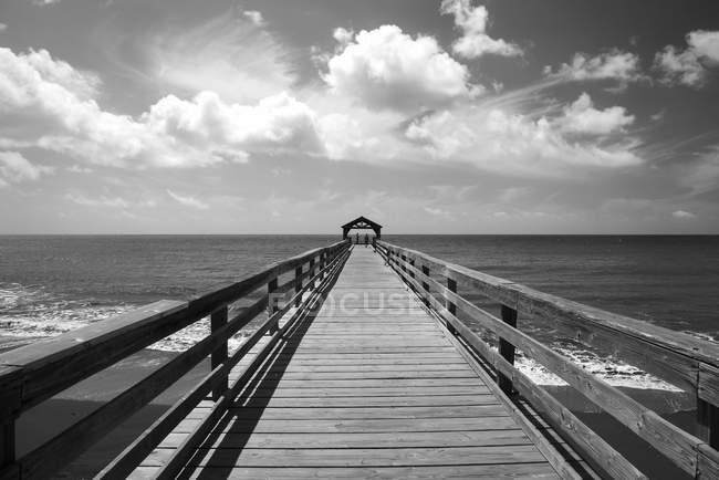 Legno Bianco E Nero : Foto in bianco e nero del pilastro di legno sopra l acqua di mare