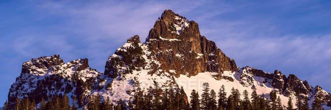 Vue du sommet Pinnacle, parc national du Mont-Rainier ; Washington, États-Unis — Photo de stock