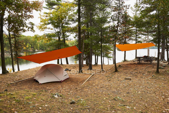 Camping Beside Birch Lake, Ontario, Canada — стоковое фото