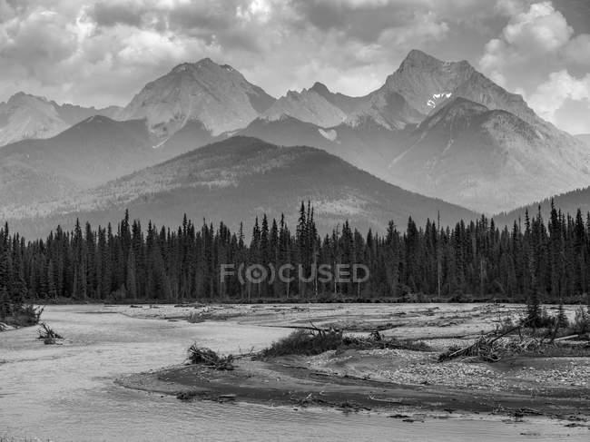 Balck et image blanche sur la forêt sur le rivage contre l'eau de la rivière et les sommets au loin — Photo de stock