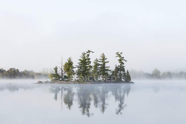 La niebla cubre una pequeña isla en el lago Tortuga en la región de Muskoka de Ontario, cerca de Rosseau; Ontario, Canadá - foto de stock