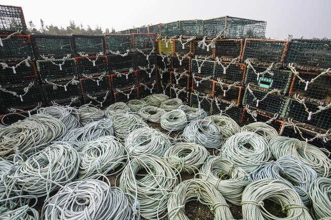 Lobster traps and ropes on the shores of Newfoundland near Bear Cove; Newfoundland and Labrador, Canada — Stock Photo