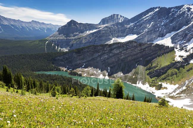 Альпийские цветы на склоне с высокогорное озеро и горный хребет; Кананаскисе страны, Альберта, Канада — стоковое фото