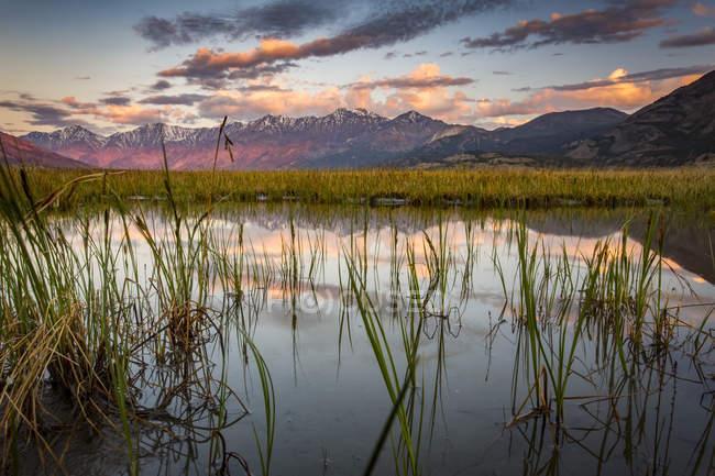 Paysage tranquille au lever du soleil des reflets dans l'eau au premier plan et une chaîne de montagnes au loin, parc national et réserve de parc national Kluane ; Destruction Bay, Yukon, Canada — Photo de stock