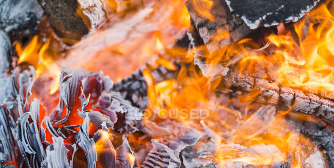 Close-up of a burning bonfire; Langley, British Columbia, Canada — Stock Photo
