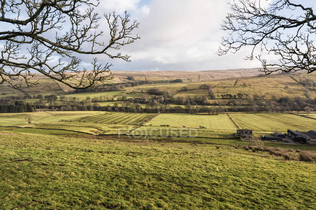 Green fields and distant hills of the Allen Valley; England — Stock Photo