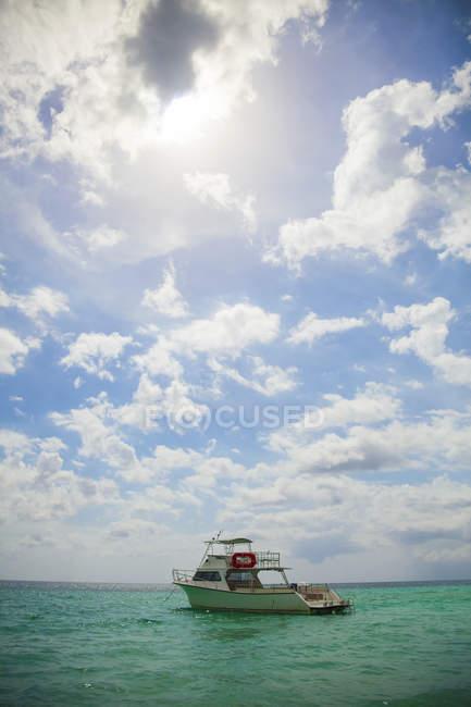Immersioni subacquee a cielo aperto in acque tropicali; Negril, Giamaica — Foto stock